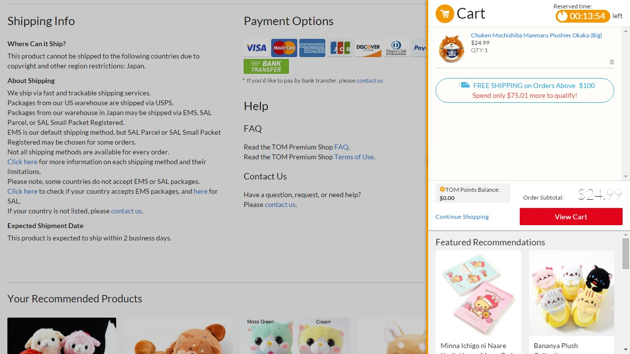 Display all the available payment options in your international ecommerce store to help customers choose.