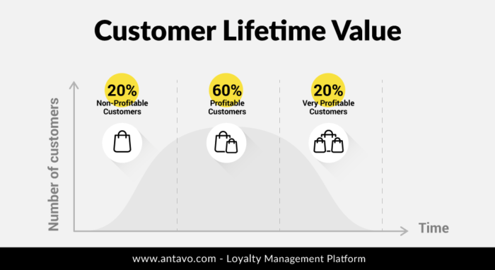 customer loyalty program clv